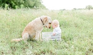 DFW Family Photographer I Young Boy with Dog